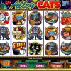Yukon Gold Casino Video Slot