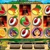 Big Kahuna Snakes and Ladders Video Slot