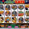 Virtual City Casino Video Slots