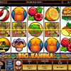 Spin Palace Casino Video Slot